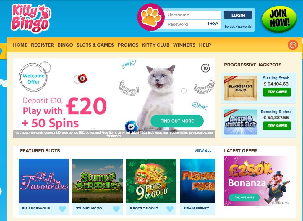 Kitty Bingo Enjoy Bingo Games And Slots