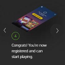 Pay n Play Register