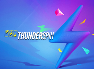 thunderspin-software-review