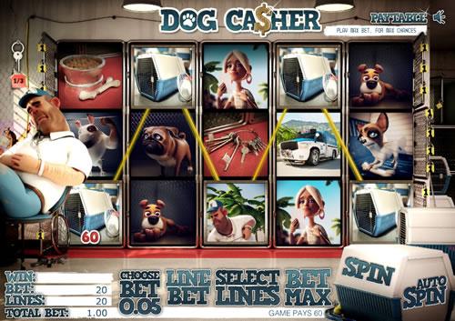 Dogcasher