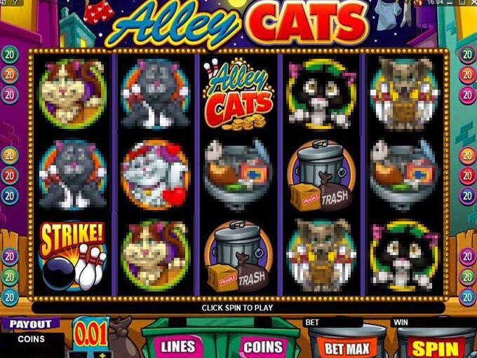 Alley cats1